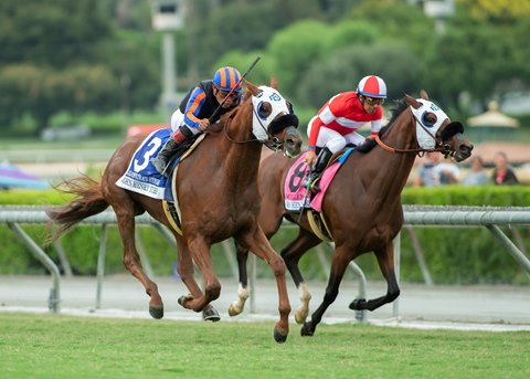 Horse Racing U S News Articles Stories Amp Trends For Today