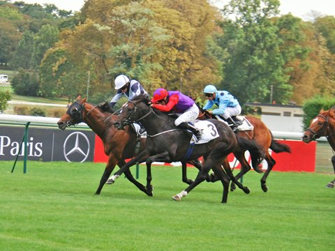 Circus Maximus Team Relieved to Keep Moulin Win