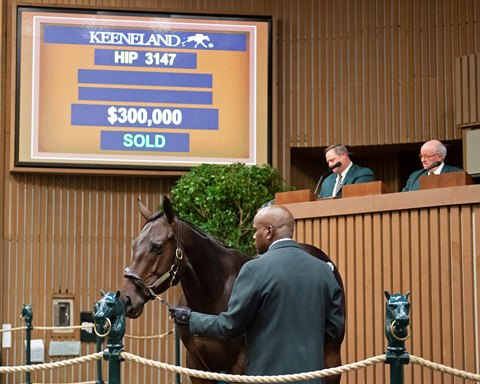 Maclean's Music Colt a Standout at Keeneland Sale