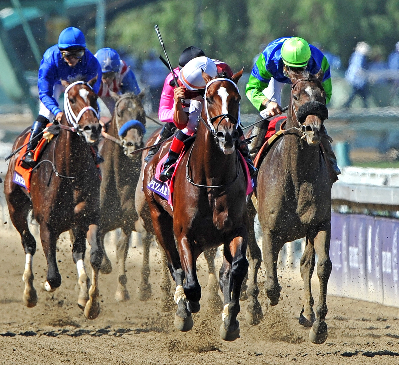 """Tapizar 2012 Breeders/' Cup Dirt Mile Photo   8/"""" x 10/"""""""