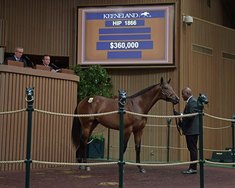 Family Updates Boost Runhappy Colt at Keeneland