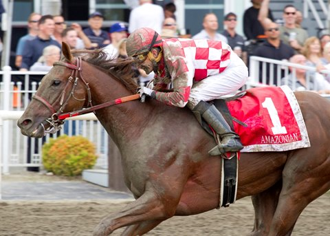Amazonian Could Stand Tall in Ballerina at Hastings