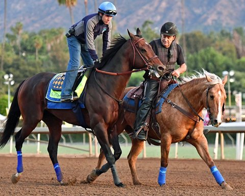 Breeders Cup Classic News Articles Stories Amp Trends For