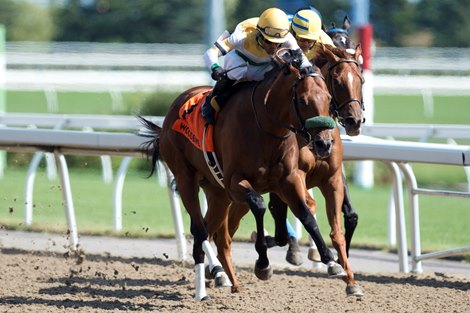 Saturday's Graded Stakes Capsules, Post Times, Previews