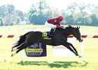Get Western jumps a shadow on his way to victory in the Old Friends Stakes at Kentucky Downs