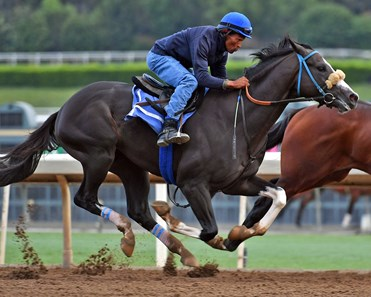 Honor A. P. - Santa Anita, September 20, 2019