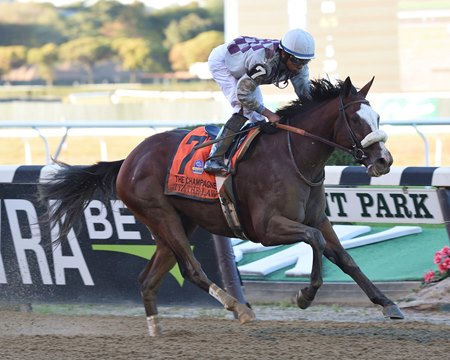 Tiz The Law Much The Best In Champagne Stakes Bloodhorse