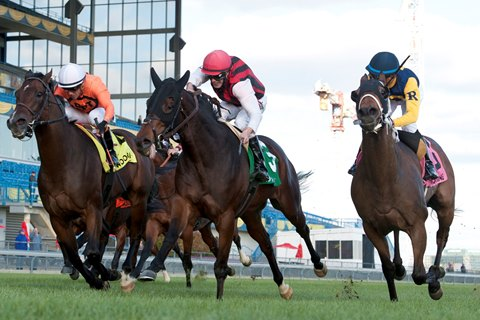 City Boy Upsets Nearctic Stakes at 24-1