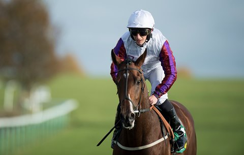 Laurens Bids to Bow Out on a High in Sun Chariot