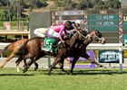 El Tigre Terrible (inside) wins the Speakeasy Stakes at Santa Anita Park