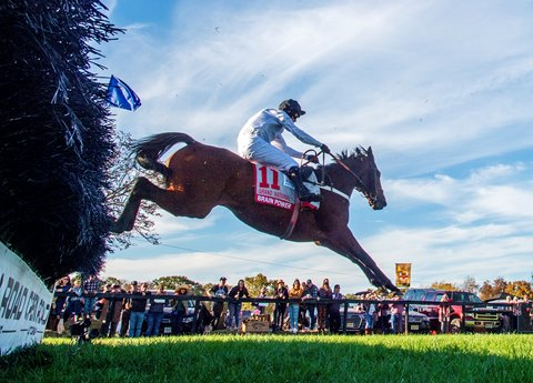 Brain Power Sails to Victory in Grand National