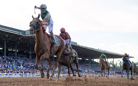 Blue Prize takes the Breeders' Cup Distaff at Santa Anita Park