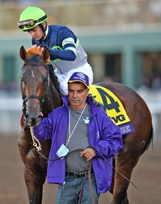 Storm The Court, Flavien Pratt up, after winning the Breeders' Cup Juvenile