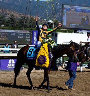 Breeders' Cup Results Boost Juvenile Sales