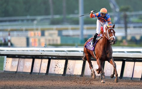 Breeders' Cup Classic Win Carries Vino Rosso to Title