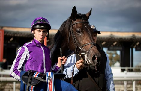 Donnacha O'Brien Up and Running as Dundalk Trainer