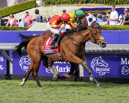 Iridessa and Wayne Lordan win the Breeders' Cup Maker's Mark Filly and Mare Turf (G1) on Nov. 2, 2019 Santa Anita in Arcadia, Ca.