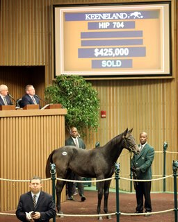 McMahon Goes to $425,000 for Arrogate Filly