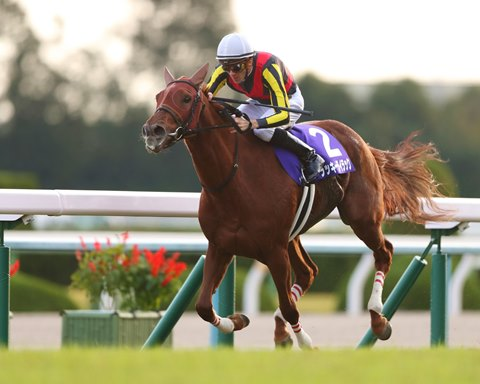 Lucky Lilac Back in Form With QEII Cup Victory at Kyoto