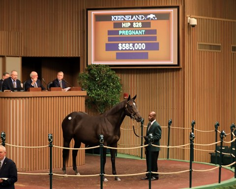 Sale Placement Pays Dividends for Live Oak