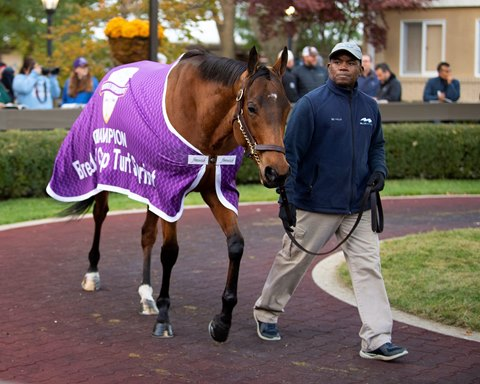 Breeders Cup News Articles Stories Amp Trends For Today