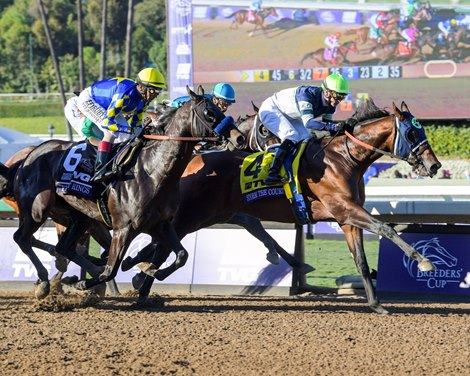 Storm The Court Upsets Breeders Cup Juvenile Bloodhorse