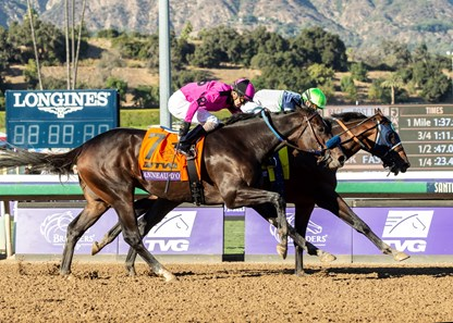 Storm the Court wins the 2019 Breeders' Cup Juvenile over Anneau d'Or