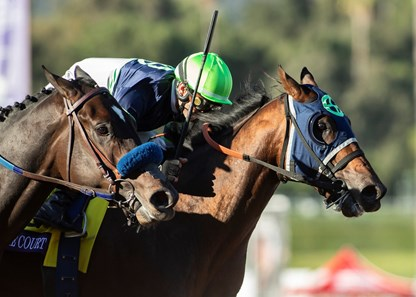 Storm the Court wins the 2019 Breeders' Cup Juvenile