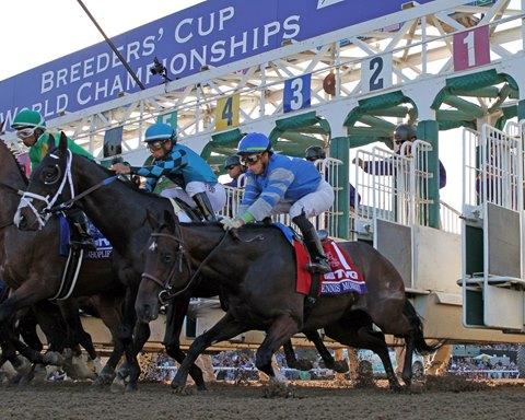 Flipboard Horse Racing Storm The Court Wins Breeders