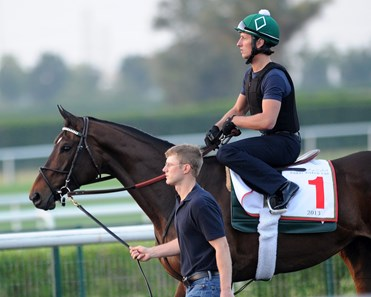 Royal Delta heads to the track for training in Dubai, March 27, 2013.