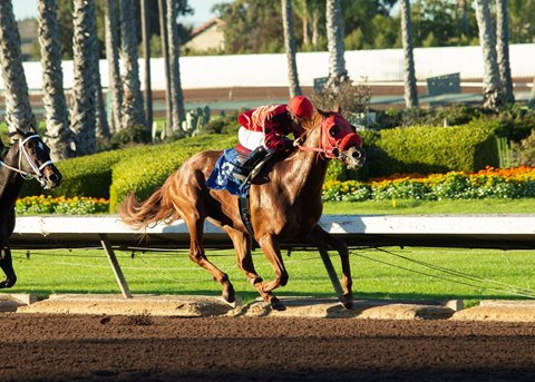Club Aspen Tops 3-Year-Olds in California Cup Derby