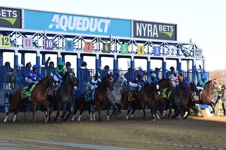 Lake Avenue wins the 2019 Demoiselle Stakes at Aqueduct