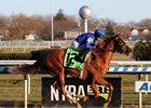 Lake Avenue wins the Demoiselle Stakes at Aqueduct Racetrack