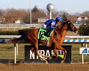 Lake Avenue with Junior Alvarado win the 98th Running of the Demoiselle (GII) at Aqueduct on December 7, 2019