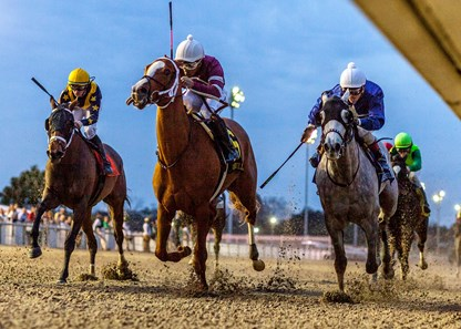 1/18/2020. -  Finite with Ricardo Santana, Jr. aboard gets a head in front to win the 28th running of the Silverbulletday Stakes at Fair Grounds.  The victory marks the 1,000th stakes win for trainer Steve Asmussen