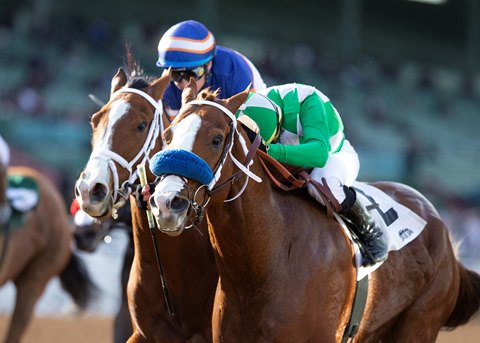 Fashionably Fast Wins Fifth Straight in Cal Cup Sprint
