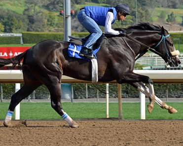 Honor A. P. - Morning - Santa Anita Park - 022320