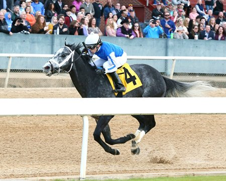 Knicks Go wins an allowance Feb. 22 at Oaklawn Park