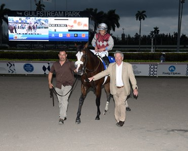 Tiz the Law wins the 2020 Holy Bull Stakes at Gulfstream Park