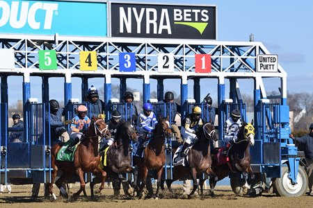 Horses break from the gate at Aqueduct