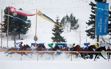 Galileo Son Wargrave Wins Grosser Preis Von St Moritz