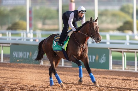 Most Americans in Center of Saudi Cup Starting Gate