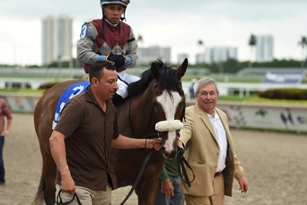 Tiz the Law wins 2020 Holy Bull Stakes at Gulfstream Park