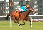 Starship Jubilee wins the Hillsborough Stakes at Tampa Bay Downs