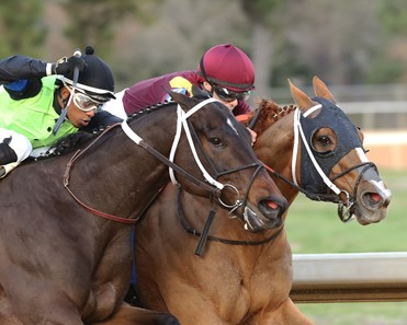Whitmore wins 2020 Hot Springs Stakes at Oaklawn Park