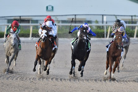 Tiz the Law wins the 2020 Florida Derby at Gulsftream Park