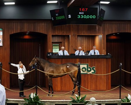 The Medaglia d'Oro filly consigned as Hip 167 in the ring at the OBS March Sale