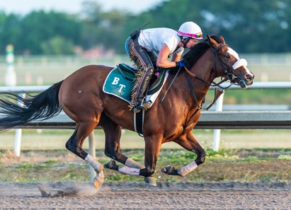 Tiz the Law - Morning - Palm Meadows - 032220