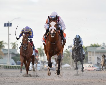 Tiz the Law wins 2020 Florida Derby at Gulfstream Park