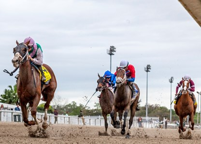 3/21/2020 - Bonny South, with Florent Geroux aboard wins the $400,000 Grade II Fair Grounds Oaks at Fair Grounds.  Hodges Photography / Amanda Hodges Weir